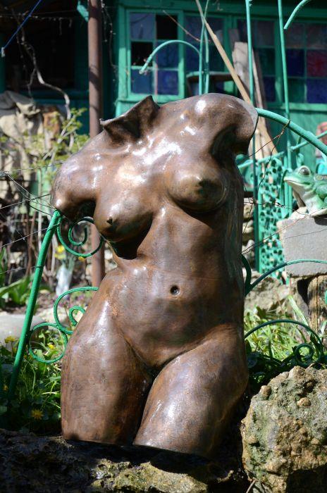 Торс голых девушек фото